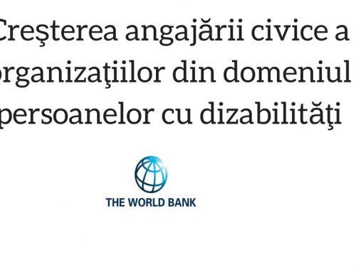 2009-Creşterea angajării civice a organizaţiilor din domeniul persoanelor cu dizabilităţi