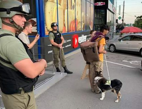 Dreptul persoanelor cu dizabilitate de vedere de a fi însoțiți de un câine ghid.